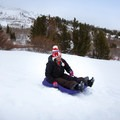 Sledding at Tahoe Meadows.- Tahoe Meadows