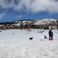 Families abound at the Mount Rose sledding hill.- Tahoe Meadows