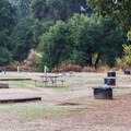 Group camping at Pinnacles National Park Campground.- Pinnacles National Park Campground