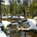 A stream that flows from Woods Lake.- Woods Lake