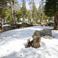 Woods Lake has picnic tables and bathrooms, and it remains very quiet during the winter.- Woods Lake