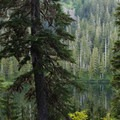 View from a campsite along Deer Lake.- High Divide Loop