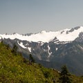 View of Mount Olympus from Bogachiel Peak.- High Divide Loop