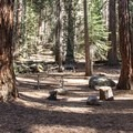 Atwell Mill Campground.- Atwell Mill Campground