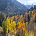 Mineral King Valley.- Cold Springs Campground