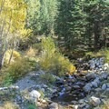East Fork of the Kaweah River at low flow.- Cold Springs Campground