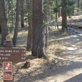 Multiple trails lead straight out from the campground to Tuolumne Meadows area highlight destinations.- Tuolumne Meadows Campground