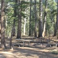 Typical group camp.- Tuolumne Meadows Campground