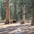 Typical site.- Tuolumne Meadows Campground