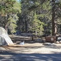 Campsites reside amist granite and lodgepole pines at Bridaveil Creek Campground.- Bridalveil Creek Campground