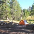Bridalveil Creek Campground.- Bridalveil Creek Campground