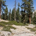 Plenty of south rim hiking options are within close proximtiy to Bridalviel Creek Campground.- Bridalveil Creek Campground