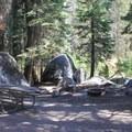 Crane Flat Campground.- Crane Flat Campground