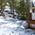 Carson Summit Trailhead. To follow the Pacific Crest Trail, veer left at the first tree on the left (marked here with a blue diamond) and begin climbing.- Winnemucca Lake, Round Top Lake + Round Top Peak