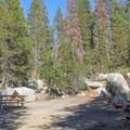 Porcupine Flat Campground.- Porcupine Flat Campground