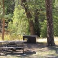Typical riverside campsite.- Wawona Campground