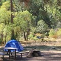Wawona Campground.- Wawona Campground