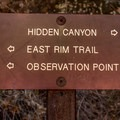 Trail junction to Observation Point.- Hidden Canyon Trail