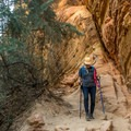 The walls of the canyon are beautiful.- Hidden Canyon Trail