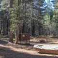 Typical campsite at White Wolf Campground.- White Wolf Campground