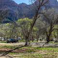 South Campground, Zion National Park.- South Campground