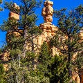 The hoodoos are a photographer's delight.- Pink Ledges Trail