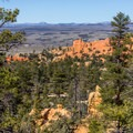 At some points there are distant views west toward the Sevier River Valley.- Pink Ledges Trail