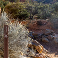 The trailhead is across the small access road to the north.- Arches Trail