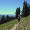 Passing through Mount Hood Meadows with Mount Jefferson (10,495 ft) in the background.- Timberline Trail