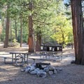 Typical group campsite at Canyon View Campground.- Canyon View Group Campground