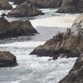 Fishing off the cliffs of Bodega Head.- Bodega Head