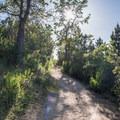 Hiking the Fremont Peak Trail.- Fremont Peak Hike