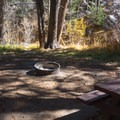 Fire pits and picnic tables are in every site.- North Lake Campground