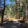 A typical shaded site in North Fork Campground.- North Lake Campground