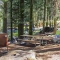 Typical creekside campsite at Lodgepole Campground.- Lodgepole Campground