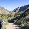 Typical stretch of trail with Fortuna Mountain visible on the left.- Mission Trails Regional Park, Visitor Center Loop