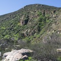 View along the Oak Canyon Trail.- Oak Canyon + Grasslands Crossing Loop, Mission Trails Regional Park