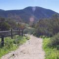 Continuing along Grasslands Loop Trail.- Oak Canyon + Grasslands Crossing Loop, Mission Trails Regional Park