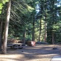 Typical forest-shaded campsite.- Sunset Campground