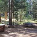 Typical interior campsite.- Sunset Campground