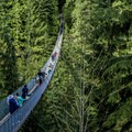The suspension bridge spans the forest floor and the Capilano River 230 feet below.- Capilano Suspension Bridge Park