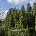 Side view of the Capilano Bridge taken from the Cliff Walk.- Capilano Suspension Bridge Park