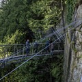 The engineering of the Cliff Walk curve is nearly as beautiful as the natural environment.- Capilano Suspension Bridge Park