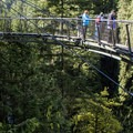 Open air under the feet of visitors to the Cliff Walk's dramatic curve.- Capilano Suspension Bridge Park
