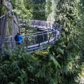 The view from the Cliff Walk down the the forest floor and the Capilano River below.- Capilano Suspension Bridge Park
