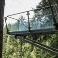 A glass plank projects out over the Capilano River hundreds of feet above the water.- Capilano Suspension Bridge Park