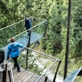 Visitors walking out onto the plank overlooking the final viewpoint on the Cliff Walk.- Capilano Suspension Bridge Park