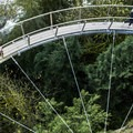 A vertigo-inducing view of the Cliff Walk curve from above.- Capilano Suspension Bridge Park