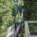 The Capilano Suspension Bridge from the western edge looking back toward the park entrance.- Capilano Suspension Bridge Park