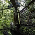 The Treetop Adventure crosses over the top of other parts of the park.- Capilano Suspension Bridge Park